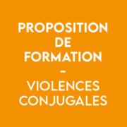 formation violences conjugales - CIDFF 04