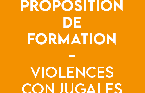 formation violences conjugales - CIDFF 04
